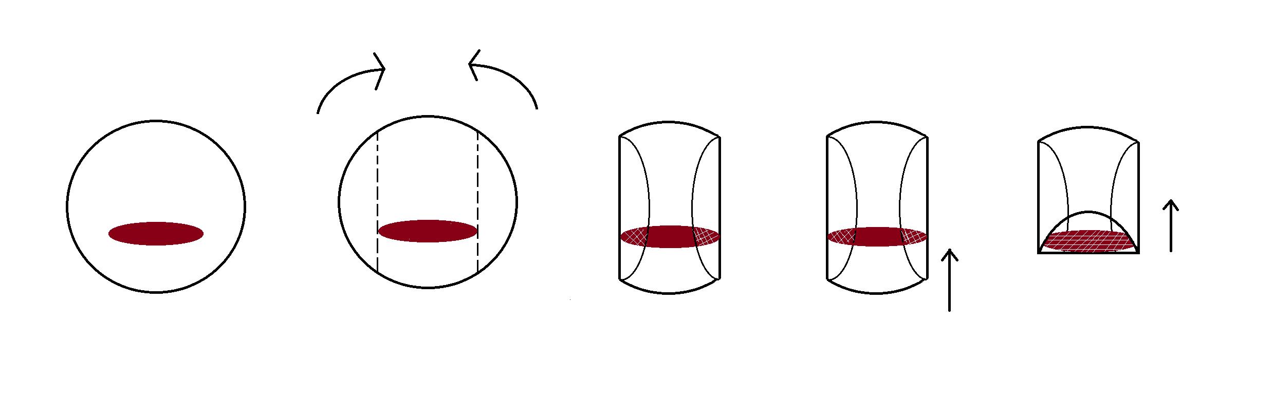 Roll-Anleitung